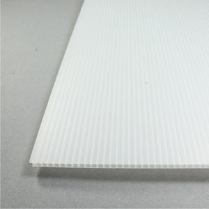 Polypropylene celled sheet