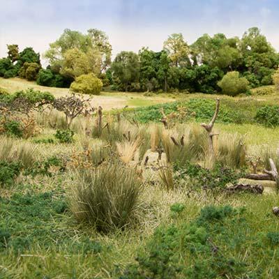 Field grass medium green