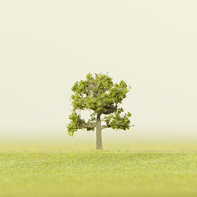 75mm light green deciduous model tree