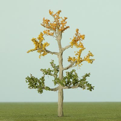 Model Korean maple tree
