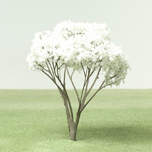 Model Snowy mespilus tree