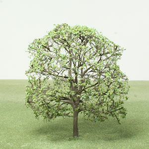 Model Hornbeam tree