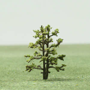Katsura species model trees