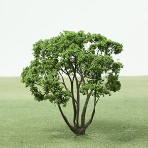 Model Dogwood tree