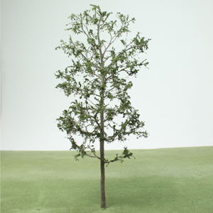Model Locust tree