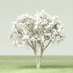 Star magnolia model tree