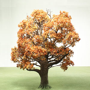 Autumn model tree