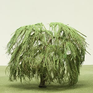 Model Weeping Willow tree