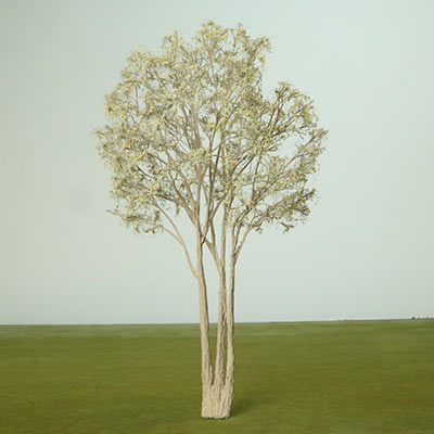 Model Red Willow Tree