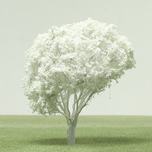 Model Glory Bush tree