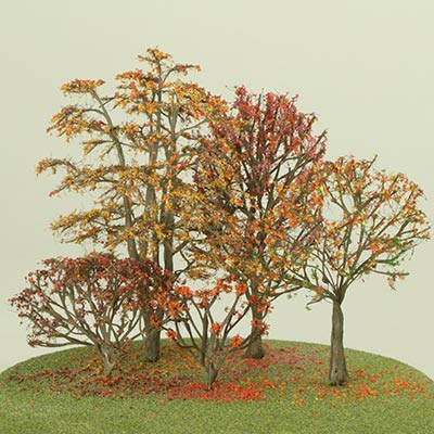 Model trees in Autumn foliage