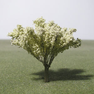 Neem species model trees